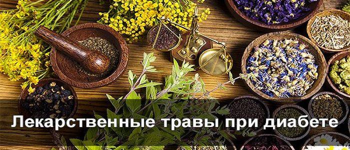 Растения при диабете: тысячелистник, одуванчик, девясил